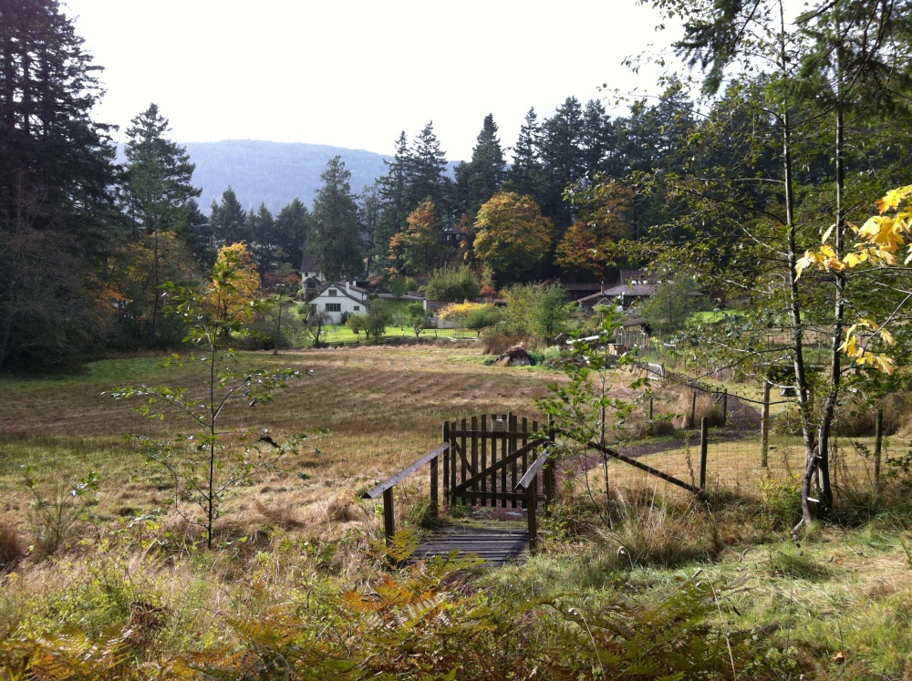 A Favourite Spot-Hastings House, Saltspring Island (5/6)