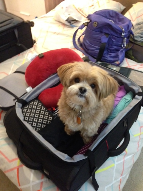 Take me with you, please.
